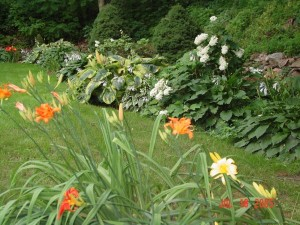 Garden_Jul2005_Image089