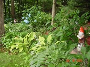 Garden_Jul2005_Image105