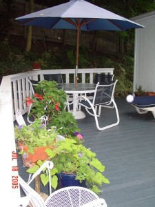 Garden_Jul2005_Image137