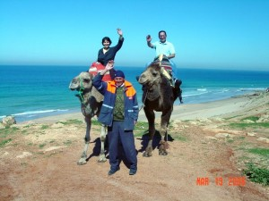 Spain_CamelRideTangerMorocco